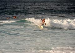 #NorthShore, #Oahu () Tags: ocean city vacation holiday praia beach strand island hawaii sand nikon paradise surf waves waikiki oahu surfer candid playa lei insel northshore surfboard   hawaiian paparazzi sunsetbeach honolulu 70300mm isle plage rtw isla aloha spiaggia vacanze mahalo roundtheworld  beachscene globetrotter le northpacific traeth hangten  cowabunga northatlantic  hang10   10days  gatheringplace worldtraveler  thegatheringplace d700 nikond700     hawaii2011    o   20112509