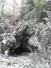 Guizhou China cave   2014龙里大鱼洞 (黔中秘境) Tags: china asia caves cave 中国 caving guizhou speleo cccp 贵州 山洞 亚洲 洞 洞穴 cavem 中国洞穴 贵州洞穴