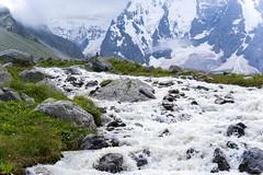 DSC01637 (panfilov.mikhail) Tags: mountains yellow caucasus bezengi горы кавказ безенги