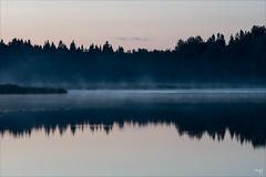 Reflection (fixedfocallength) Tags: reflection lumix sweden schweden balticsea panasonic canonfd m43 mft treesilhouettes gx7 microfourthirds canonfdn85mm118