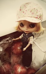 Blythe A Day September 2014 - Sept. 1 Archive (Weeping Sabicu) Tags: