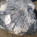Trash on Pulau Ubin: Bagged trash