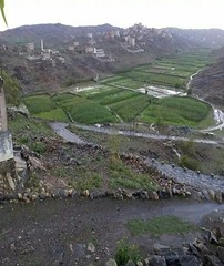 10527874_1463055560639765_1614845573461207204_n (Mohamed1403) Tags: old heritage nature coffee design quality south country kind architect arab yemen cultivation                yafea    aziaacom