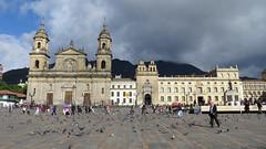 Bogota-43