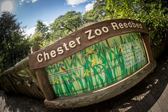 Chester Zoo (Mark Carline) Tags: our zoo cheshire chester
