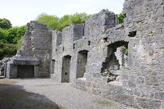 """Portumna Abbey (Gaeilge Bheo) Tags: ireland irish galway abbey photography photo cool ruins pretty dominican ruin images gaeilge cistercian connacht nofilter facebook photooftheday connaught picoftheday linkedin art"""" portumna éire history"""" day"""" """"photo """"best twitter """"high ireland"""" """"irish allshots """"pic bestoftheday """"tourist """"tourism """"visiting pinterest """"instagram instagramers instadaily igdaily instagood instamood instago """"fergal jennings"""" res"""" resolution"""" """"sighseeing ireland"""" ferghalj pintergy"""