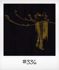 "#DailyPolaroid of 30-8-14 #336 • <a style=""font-size:0.8em;"" href=""http://www.flickr.com/photos/47939785@N05/15347608352/"" target=""_blank"">View on Flickr</a>"