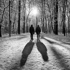 sunbathing (Dan-Schneider) Tags: streetphotography street schwarzweiss silhouette shadow sun monochrome mood blackandwhite bw noir snow