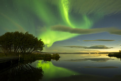Aurora Borealis on Iceland, Lake Myvatn (Jacada Travel) Tags: astronomy auroraborealis calm clouds cloudscape constellation dawn green horizon iceland idyllic illuminated lake landscape meteorology myvatn night nobody northener northernlight reflection rural seascape shine sky starrysky stars sunset tree