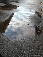 Riflesso (PinKodama) Tags: puddle storm riflesso pozzanghera reflection