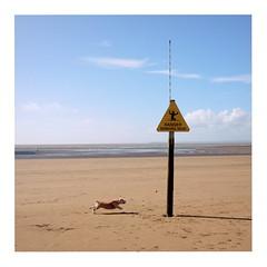 Beware (ngbrx) Tags: westonsupermare somerset england uk united kingdom vereinigtes königreich great grossbritannien britain beach strand dog hund beware sinking mud sky himmel sign schild