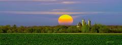 un jour mon prince viendra, en couleurs. (gillesfournier005) Tags: couleurs chateau d5100 soleil arbres