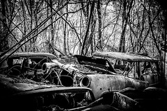 L1001548 (Bruno Meyer Photography) Tags: cars vintage destroy abandoned hangar nowhere downtown trash rust rustneverdie explore photography raw edit leica leicaimages leicacamera leicacamerafrance leicam240 leicaworld leicalens 35mm summarit blackandwhite bw blackandwhitephotography