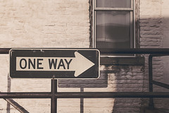 One way only (Free for Commercial Use) Tags: pictures new travel original wallpaper blackandwhite bw black texture window glass beautiful sign photography photo blackwhite interestingness interesting day image photos background streetsign stock picture free images explore cc credit header rights creativecommons excellent gratis daytime oneway arrow jpg wallpapers jpeg railings reserved inspiring headers exciting freestuff stockphotography freebies highquality royaltyfree commercialuse freephotos onewayonly creativecommonsattribution dailyimage freeimages headerimages jpegphoto freephotography freepictures attributionrequired freeforcommercialuse ffcu freephotographer freefcu attributetheoriginalcreator freeimagesdaily freeforcommercialusecom ffcuimages ffcuphotos ffcupics ffcupictures ffcustuff ffcuart