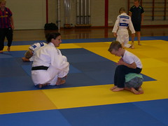 "zomerspelen 2013 Judo clinic • <a style=""font-size:0.8em;"" href=""http://www.flickr.com/photos/125345099@N08/14220618020/"" target=""_blank"">View on Flickr</a>"