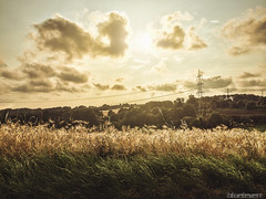 Foto 40 (blueleven) Tags: sunset sky sun apple nature field grass clouds photoshop landscape warm retouch beams iphone 5s