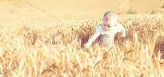 Amor (jbresco) Tags: baby photography photo nikon foto mamá mum land campo shooting landsacpe photoshooting d80 miniño nikond80 photonikon