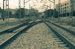 YPMP (ndrg) Tags: old blackandwhite bw blancoynegro sepia train 50mm blackwhite nikon rail bn nikkor 50mm18 d5100