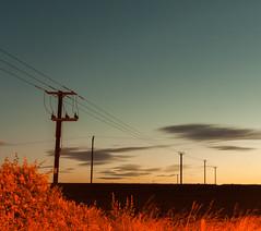 Manydown Farm (DUM4S5) Tags: sunset deleteme8 deleteme3 saveme saveme2 saveme3 deleteme10 telephone cable hampshire pylon basingstoke