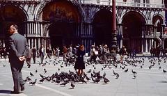 St Mark's Square, Venice, 1961 (Sharaz Jek) Tags: travel venice italy pigeons kodachrome 1961 piazzasanmarco stmarkssquare vintageslides plustekopticfilm8200i