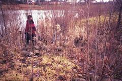 (ZaiLeeP) Tags: longexposure trees lake blur nature water analog creek forest 35mm blurry pond woods nikon rocks purple naturallight blurred nikonf100 35mmfilm figure 35mmphotography naturallighting c41 colorfilm colourfilm