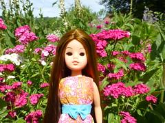 Sindy After (Fashion doll fan1) Tags: dark sweet ooak sienna dreams custom nylon pedigree sindy reroot doubloom