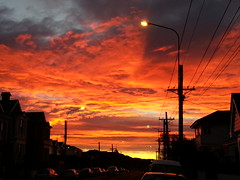 High ember (sunrise)