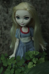 Button (Vuffy VonHoof) Tags: blue woman white snow black green apple nature mushroom girl lady forest vintage mushrooms photography high woods women doll dolls looking antique alice ghost young blonde after ghosts clover wonderland ever