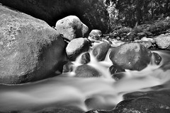 Mountain stream (Elephas_a) Tags: longexposure motion water creek landscape waterfall rainforest rocks stones australia falls queensland oreillys waterscape lamingtonnationalpark movingwater ndfilter