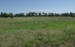 Lot 100, North Road, Wallumbilla QLD