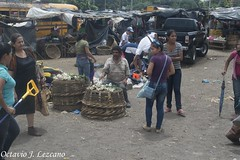 Mercado de Masya | Masaya's Market (Zeros86) Tags: street people photography nikon gente market mercado nicaragua masaya centroamerica nikond3200 d3200 latinomerica octaviojoselezcanohernandez zeros86 zeros86photography