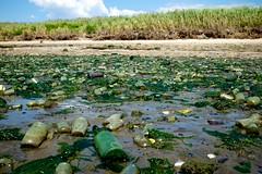Dead Horse Bay (ian.crowther) Tags: seaweed beach glass brooklyn bottles jars landfill deadhorsebay deadhorsebeach