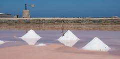 Mezzogiorno di Fuoco  # EXPLORE# 14/8/14 *273* by gigisicily45 - concentrazione altissima !   il sale è quasi da raccogliere