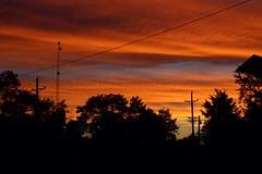 Orange like tangerine (VipinView) Tags: trees sunset sky orange sun iso100 view t3i