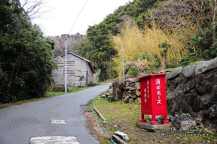 2014田代島10.jpg