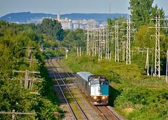 The mountain that gave Montreal its name (Michael Berry Railfan) Tags: westisland train quebec montreal via viarail lrc pointeclaire f40ph2 f40ph3 via6432 via639