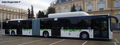 11 (petko_dragov) Tags: man sofia newbus 126newbusfromsofia