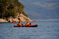 Kayaking, Abel Tasman National Park, Tasman Bay (flyingkiwigirl) Tags: park apple rock island fisherman kayak nelson national seal split abel tasman adele shag kaiteriteri
