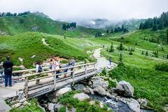 Mt Rainier National Park, WA   ( @ Elevation 5242 Ft )