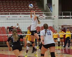 Michigan vs FSU Volleyball (Garagewerks) Tags: woman college sport female university all state michigan sony fsu msu volleyball f28 70200mm views50 slta77v