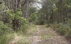 Lot9. DP862049 Aqua Park Road, Mount Mitchell NSW