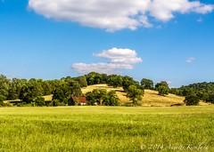 Tennessee Barn (Annette Kirkland) Tags: summer sky corn nikon tennessee alabama americanflag fencepost d7100 barnsoftennessee