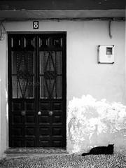cat & door (Nello Odierno) Tags: tetti porteefinestre altreparolechiave