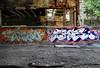 Taboo Shots (carnagenyc) Tags: nyc newyork brooklyn graffiti taboo 41shots dym host18