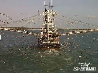 shrimp boat Amelia Island, FL