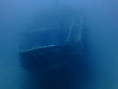 Karwela Wreck, Xatt LAhmar, Gozo (yayapapaya77) Tags: underwater diving malta shipwreck wreck mediterraneansea gozo wrack tauchen unterwasser mittelmeer karwela canonpowershotg15 xattlahmar karwelawreck
