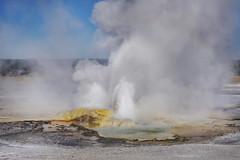 Yellowstone National Park (chelseamoll) Tags: nationalpark yellowstone wyoming geyser