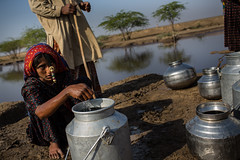 Dhaneta Jat tribe girls collect water from the well, in great rann of kutch (anthony pappone photography) Tags: travel girls india water colors silver colours handmade muslim earring piercing ring well rings tribes asie nosering cloth ethnic indi indien nomads indi yat islamic gujarat inde ethnology azi nomadic indland noserings kutch bhuj  jat etnic greatrannofkutch indija  etnia handembroidered ethnie collectwater dhanetajat dhaneta   jattpeople jatttribe earringnose earringjatjat jattribe desertkutch kutchtribes anthropologye dhanetajattribe