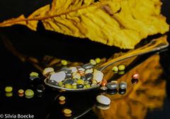Potpourri (Silvia Boecke) Tags: autumn food fall beans essen herbst peas lentils potpourri legumes bohnen hülsenfrüchte linsen erben silviaboecke