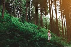 Girl in wood (Oleh Slobodeniuk) Tags: wood travel light summer fern tree green girl beauty pine forest dress walk